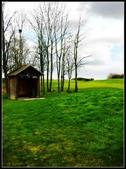 Golf National_David (CKOYCA) Tags: david rambouillet golfnational deswarte