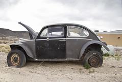 VW (Curtis Gregory Perry) Tags: auto usa black abandoned car america bug volkswagen us automobile desert united nevada mobil motor baja states automvil goldfield aircooled xe automobil     samochd silverstate  kotse  otomobil   hi   bifrei  automobili   gluaisten