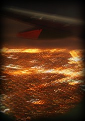 City of bright worms (LifeAsIPictured) Tags: nyc sky plane mercedes bright wind dominicana duquesa countryfeelings mercedesramirezguerrero duquesam mercedesramirez wormns duquesamercedes dominicanrepublicpictures lifeasipictureit