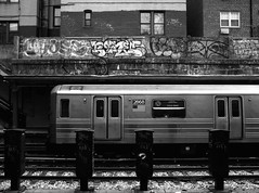 N Train / Coney Island (Atomic Citrocity) Tags: nyc station brooklyn train graffiti bay n parkway bensonhurst