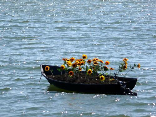 Auringonkukkavene