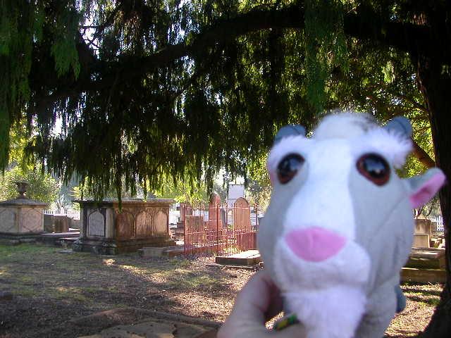 http://farm4.static.flickr.com/3173/2547729124_6c30ca8808_o.jpg