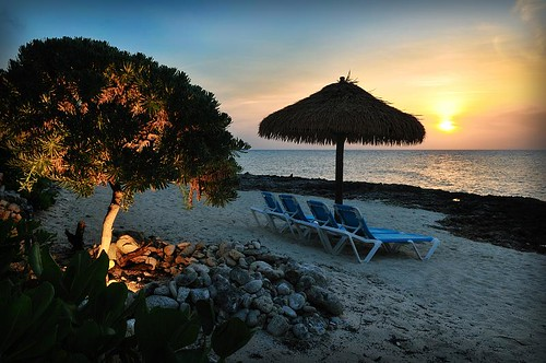 Cayman Dreaming