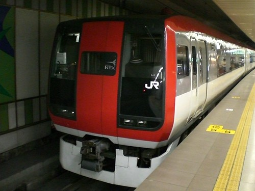 Narita Express at Narita Airport