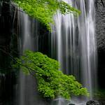 Tatsuzawa-fudoh Falls