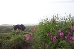 ヨツバシオガマと親沼をのぞき込む二人