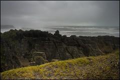 Field of Pancacke Rocks (matt.sellars) Tags: newzealand pancakerocks hdr