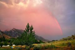 Under the Pink Rainbow :) (janoid) Tags: wow utah bravo july alpine xo mybackyard imback somewhereovertherainbow xoxoxoxoxox xoxoxoxoxoxoxo pinkrainbow icameback andsodoyou whocouldaskformore happyhug notsofast yourthebest manquelitoishere oneforyouandoneforme soundslikeaplan janalicious janoidmagic janoidsstyle ttttttttttttttttttttttt tositunderthepinkrainbow lovethechairs yourphotosmakemesmile adirondakrockingchairs lovethechairsletssit illsitontheyellowone iiiiiiiiiiiiiiiiiiiiiiiiiiiiiiiiiiiiiiiiiiiiiiiiiiiiiiiiiiiiiiiii