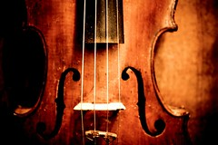 String Theory (Celine Chamberlin) Tags: music oregon musical violin fiddle instruments cartwrights stayton cartwrightsmusicrepairshop