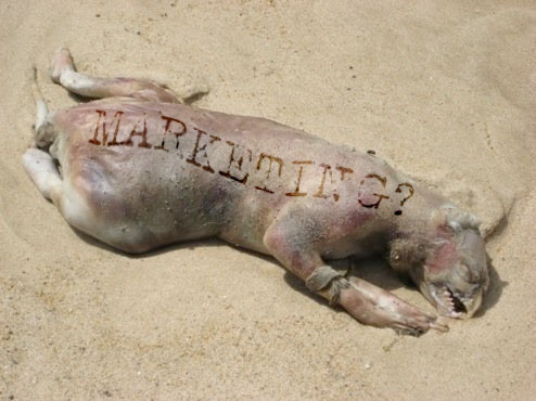 Montauk Marketing Monster