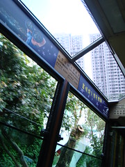 Victoria Peak Tram Angle of Ascent
