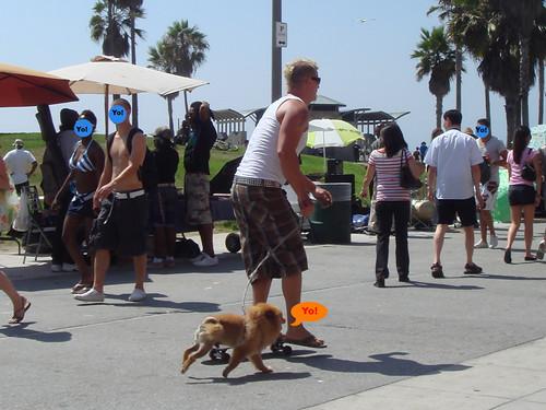 mohawk skater and dog.jpg