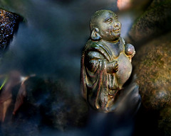 Bathing Buddha (ViaMoi) Tags: canada statue stone digital creek canon photography exposure buddha ottawa viamoi