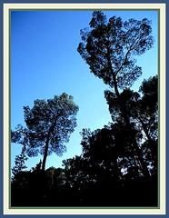 Sounds of Nature - zvuci prirode (*shana) Tags: blue st colorful croatia shana split dalmatia snjegovic snjezananovak
