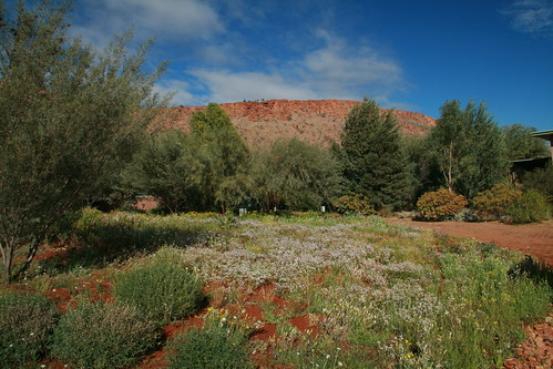 Desert Park Alice Springs