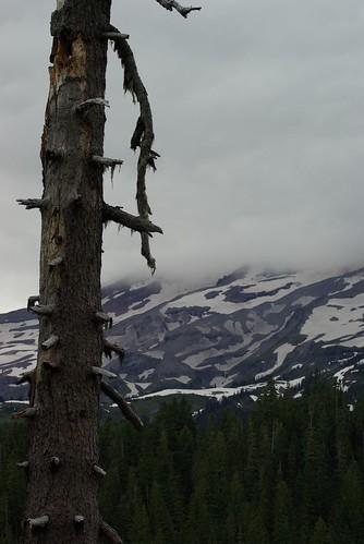 2008-07-31 Mt Ranier (21)