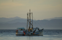 sointula_fishboat (Xlux) Tags: island bc sointula malcolmisland