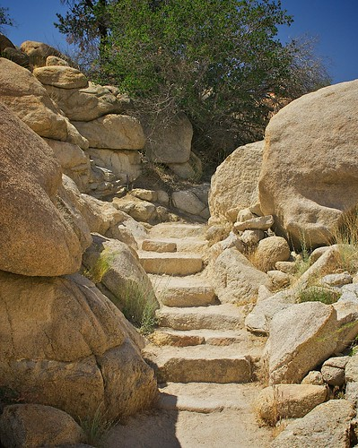 Steps, Joshua Tree National Park