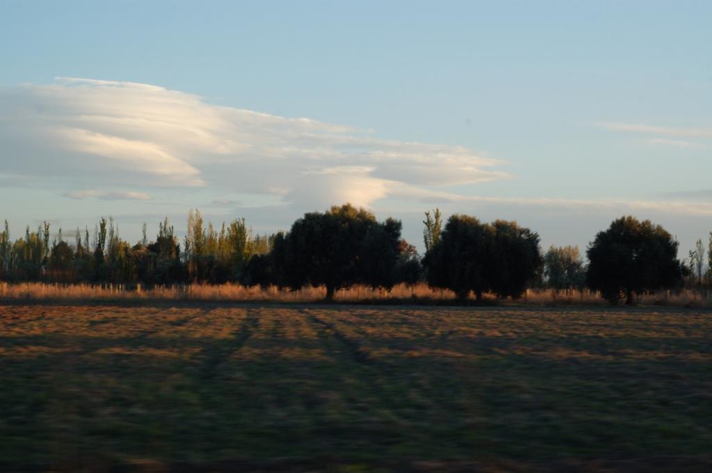 mendoza2008 47