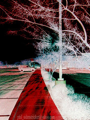 Walk with Me (phil_sidenstricker) Tags: abstract tree art nature photomanipulation landscape colorful path digitalart perspective surreal artcafe strangeworld mindseye donotcopy darkarts awardtree florenceazusa digitalartfx artcafedomidoexhibitionscomein