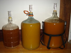 14 Gallons of Cider!