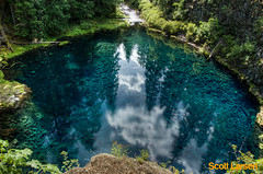 Tamolitch Falls - Blue Pool (ScottLarsen) Tags: county blue trees lake mountains green nature water pool oregon forest river waterfall whitewater stream hole hike falls best foliage clear trail national lane cascades recreation lush chinook mckenzie willamette select bluehole bluepool glacial oldgrowth lanecounty mckenzieriver willamettenationalforest tamolitch mckenziebridge tamolitchfalls