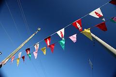 Bhuddist Prayer Flags (Mt. Everest) (HamWithCam) Tags: atl dec hamwithcam hwc decatur 5d 1740l atlantta bwcpl