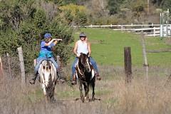 Equestrians at Calero County Park (donjd2) Tags: ca horse usa sanjose equestrian calerocountypark
