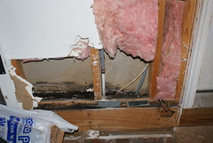 Water Leak (swhall72) Tags: wood rot home water rotting repair mold leak