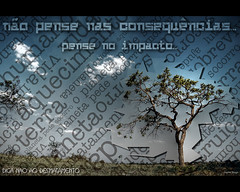 impacto (Jayme Diogo) Tags: