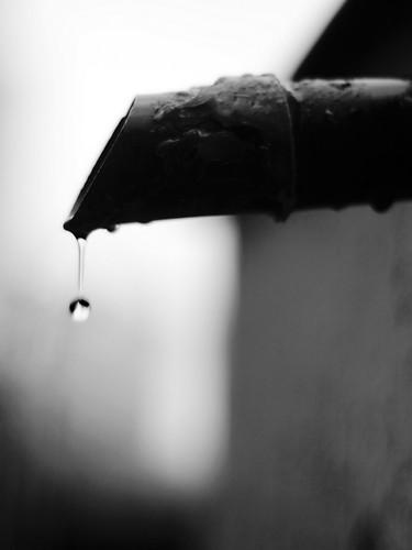 Last rain drop