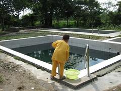 Kolam Air Panas Tok Bok (kjagro) Tags: air kolam panas