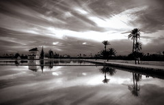 Menara (Lou Rouge) Tags: travel sky bw reflection water clouds garden agua jardin palmeras bn palmtrees morocco cielo nubes marrakech estanque reflexions marruecos menara reflejos jardindelamenara retofs1