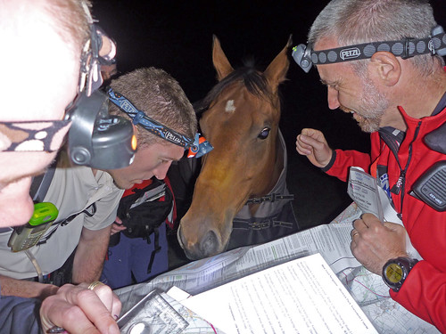 """New team member """"horsing around"""" with the map"""