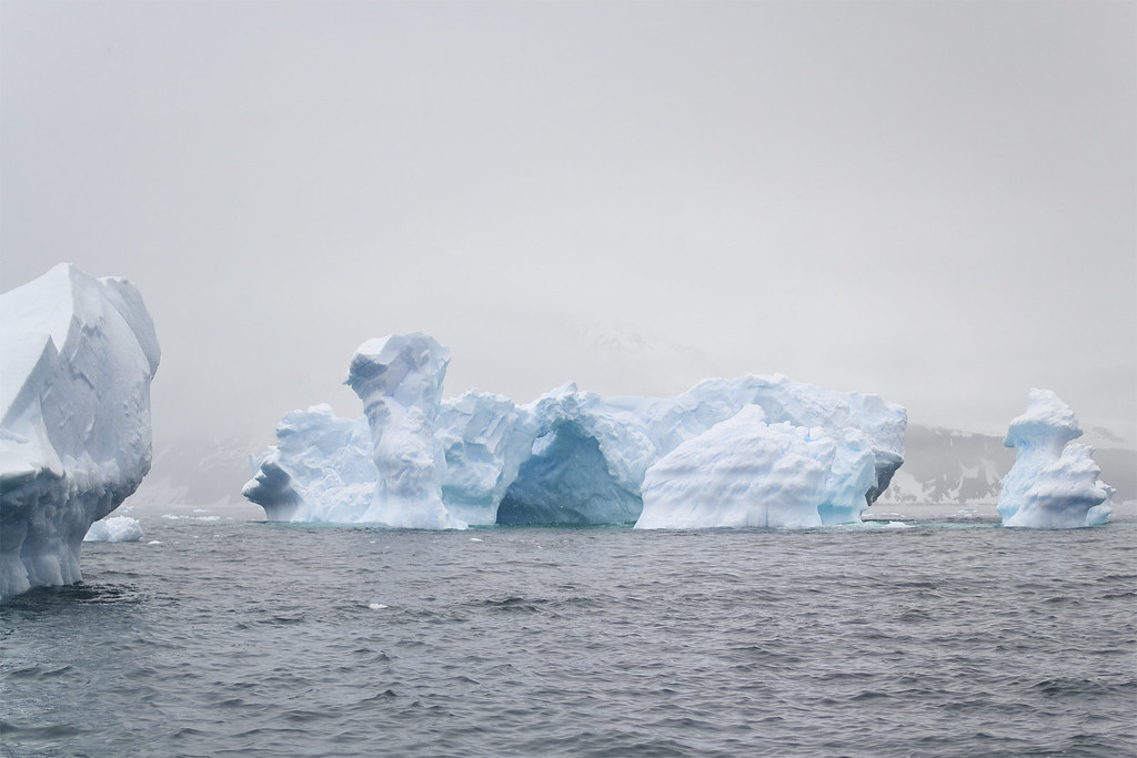 Icebergs at Cierva Cove