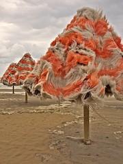 [AA0123]* 2011/05/17_001 (sdb66) Tags: sea italy beach water mediterraneo italia day mare outdoor pe spiaggia abruzzo adriatico pescara ombrellone marmediterraneo mareadriatico panasonicdmcgf1 lumixg20mmasphf17