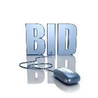 Domain Auctions