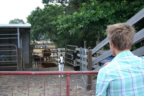 Kiersten, our lovely host, showed us a farm in Leongatha