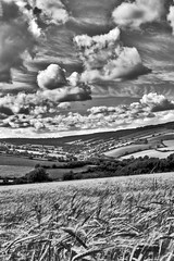 Barley Field 2 (B&W HDR) (rmrayner) Tags: summer sky blackandwhite bw sunlight field barley rural canon spectacular landscape outside outdoors eos countryside daylight photo scenery view wideangle devon crop vista canoneos hdr highdynamicrange 202 thegreatoutdoors westcountry theworld planetearth ashcombe tripleshot 3xp photomatix tonemapped aeb 3exposures truetone hdrimage blackwhitephotos handheldhdr hdrsky hdrskies hdrpicture hdrclouds photomatixhdr hdriimage rmrayner ralphraynerphoto hdrview ralphrayner hdrscene landscapeandsky landscapewithsky