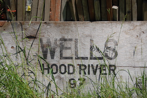 wells hood river