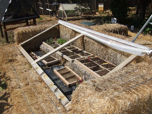 Homemade Cold Frame by terriem on Flickr