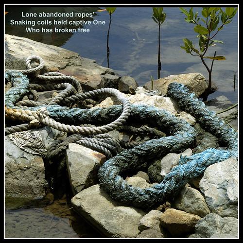 67_Ropes