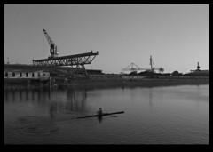 Abend/Rheinhafen (AL/EX) Tags: blackandwhite film analog 50mm harbour hc110 bronica rhine ilford fp4 rower rheinhafen etrs ruderer zenza kodal dillutionb