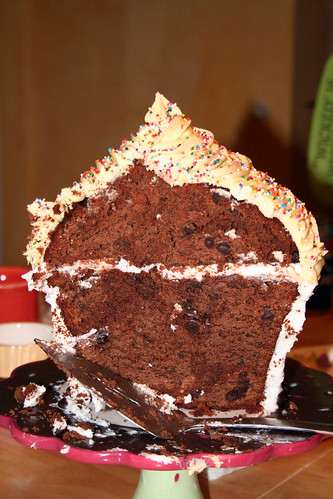 giant cupcake cross-section