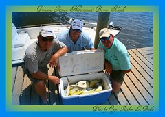 Biloxi, MS - Scottie Wilcox, Mark Wilcox, & Brad Bynum Caught This Box of Florida Pompano While Fishing With Capt. Robert L. Brodie - Photo By Capt. Robert L. Brodie (teambrodiecharters) Tags: friends fish beautiful island happy islands fishing surffishing pompano markwilcox charterboat nicecatch guideservice fishingfriends bradbynum wadefishing beautifulfish floridapompano sightfishing islandfishing teambrodiecharters dibervillemarina lighttacklefishing boxoffish happyanglers scottieellison