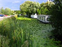 Houseboats (Simon Downham) Tags: green river riverside houseboat riverbank waterside waterlilley