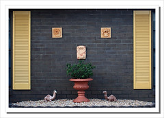 Camel's rest-5012 (Barbara J H) Tags: wall garden pebbles brickwall shutters planter camels gardenornaments barbarajh countdownto2009yourdiary camelstatues