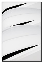 Flying (pierre bdat) Tags: blackandwhite white black noir noiretblanc diagonal blanc artisticexpression