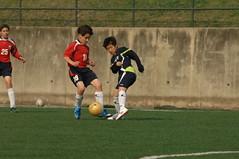 live for soccer