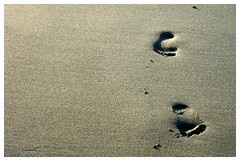 two steps (wunderskatz) Tags: sea summer two sun feet beach water sunshine out gold golden sand shadows sandy fine steps footprints copacabana part shore footsteps grains aphrodite coming gora tenger tengerpart montenegro vge ht ulcinj crnagora nyr crna homok napsts rnyk hangulat wunderskatz lps afrodit nyrvgi